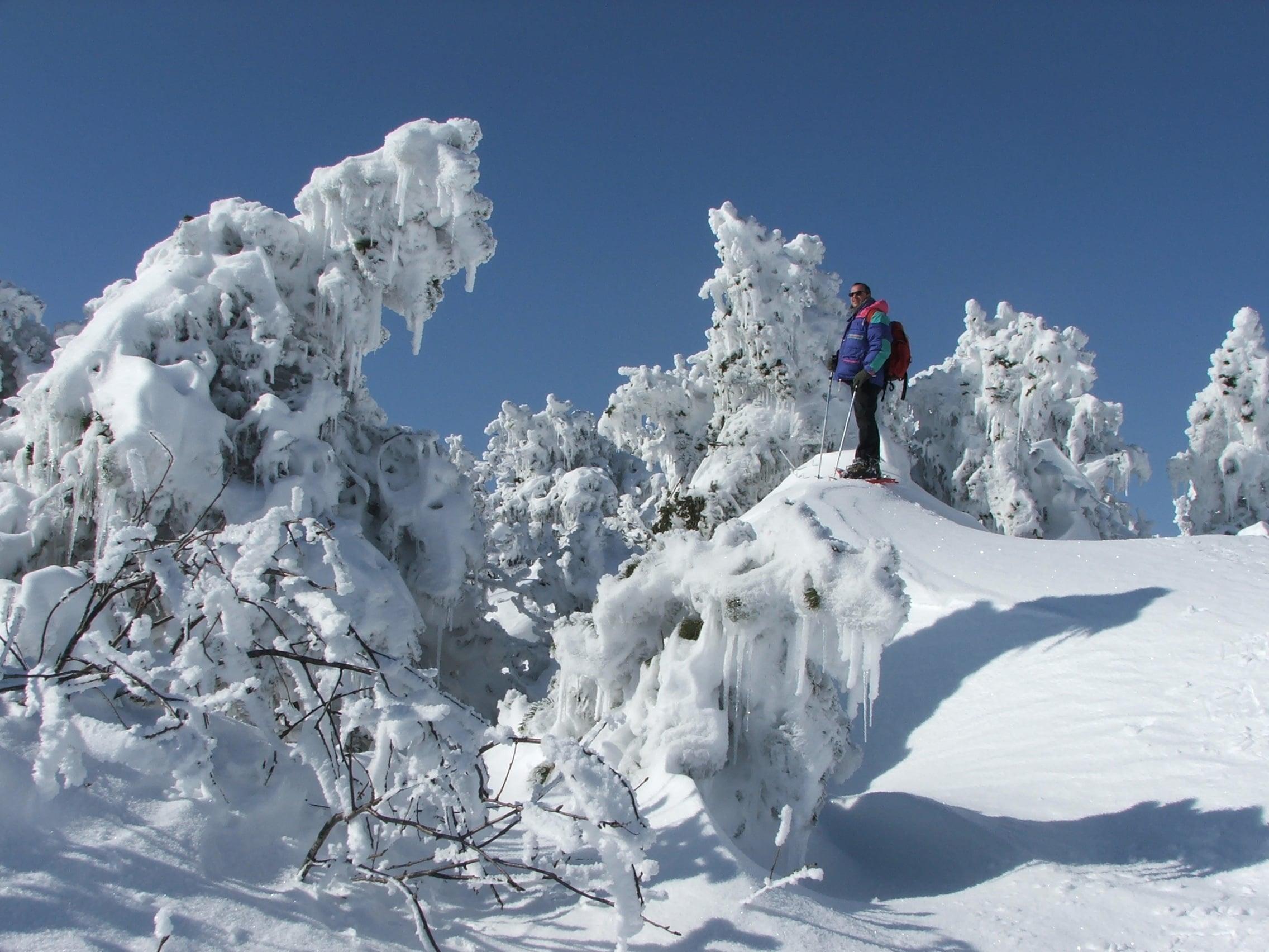 Randonnée Raquettes Mont Aigoual 114