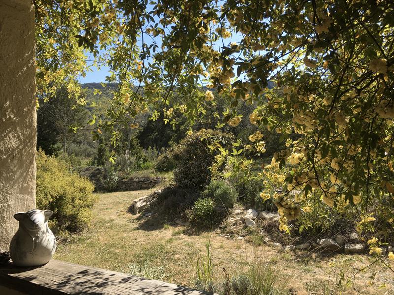 Gite de charme Gard Pompignan Exterieur 87