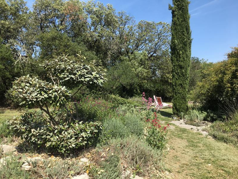 Gite de charme Gard Pompignan Exterieur 90
