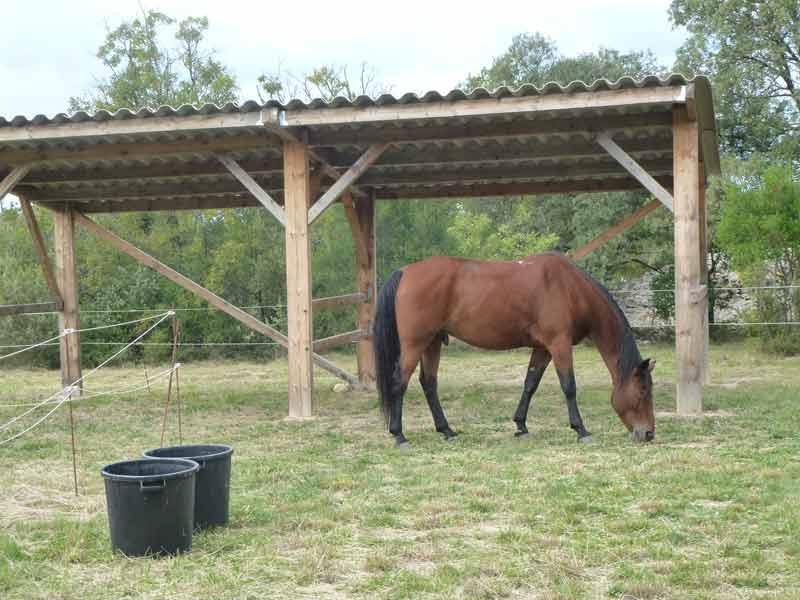 Gîtes rando chevaux 185